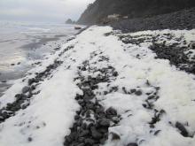 sea foam, Clatsop County, Cove Beach north, Arch Cape, Arch Cape Creek