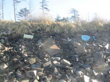 Debris from storm, Near Cape Lookout campgrund