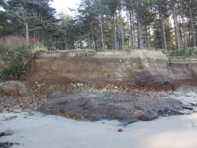 Collapsed bluff south of creek