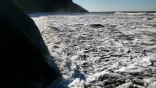 King tide; Lane County, Cape Cove, Sea Lion Point, Sea Lion Caves