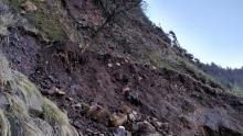 Several more cubic yards of real estate has slid down the cliff along the westside of hwy 101 and onto the beach.