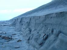 Dune erosion- cut back of vegetation.