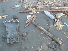 Variety of beach debris