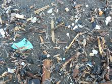 Massive amounts of micro-plastics