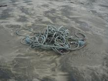 There were two similar large masses of rope in two locations on the beach. There are marine life attached to them.