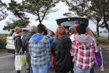 Shoreline science hands-on