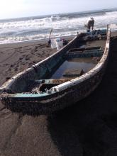 This boat washed up on the beach just north of Port Orford. Dr. John Chapman has collected specimens to be identified.