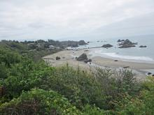 Photos taken from top of trail, looking south. Seasonal beach erosion at southern end of Mile 7.
