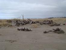 This is what happened to the fort that we mentioned. It will probably be rebuilt by kids in the summer. It is still a danger. We should probably take away some driftwood still there.