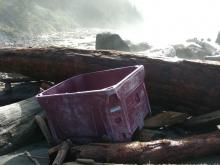 This fishing storage container is now up against a log jam at the south end of the beach.