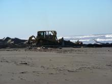 Plowing is being done to flatten and remove the dune grass from the Snowy Plover nesting grounds.