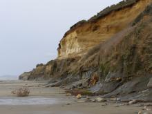 This shows the bluff overlooking the beach on Mile 212, with strata representing thousands of years.
