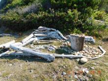 Driftwood and rocks, Buckley Creek