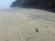 Tarry sand