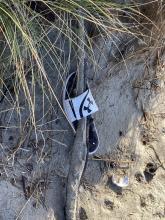Sandal left on the beach