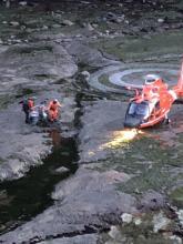 Whale Cove Rescue