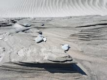 Sand Sculptured by the wind