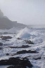 Windy Way, Yachats OR, South