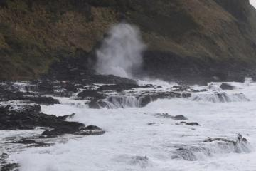 North Face of Cape Perpetua