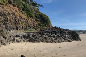 Driftwood at surf line below Chapman Point.