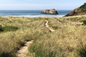Path from 7th Street to Chapman Beach, Chapman Point and Bird Rocks