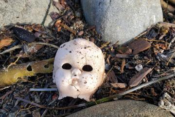 Halloween? litter
