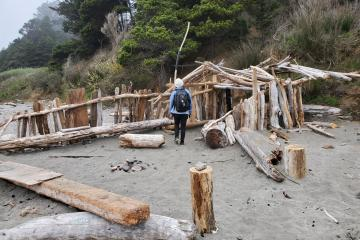 Elaborate driftwood structure near Hubbard Creek.