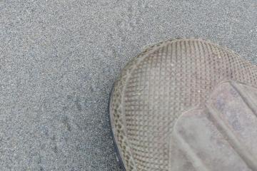crab tracks?