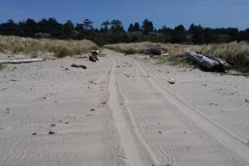 Tire tracks on beach north of Beaver Creek