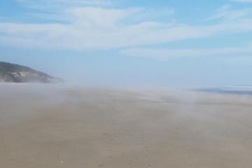 Fog on beach