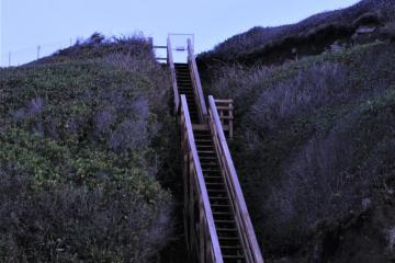 8-Steps down from bluff