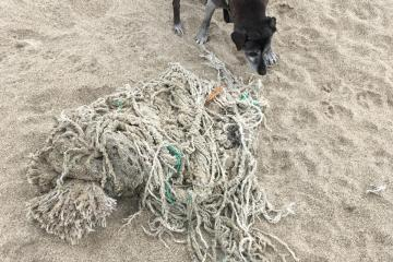 Rope from fishing gear