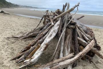 Driftwood Lean-to