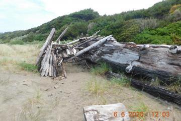 Big log supporting Buckley Creek leanto 6-6-2020