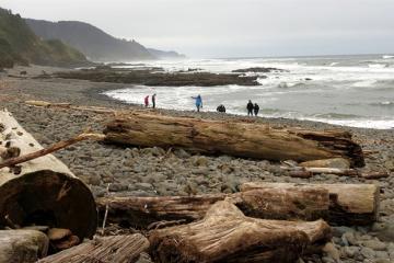 Bob Creek Beach