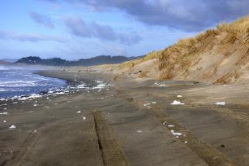 Sea foam left- King Tide receding 10:44am Bob Straub State Park
