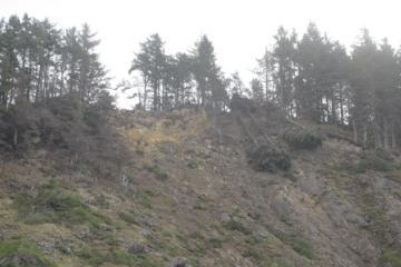 rock slide near Arch Cape