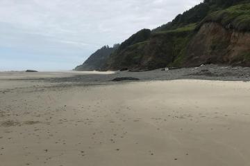 Ocean Beach looking north