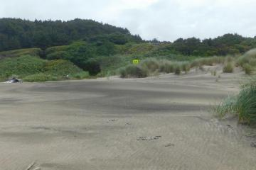 Looking from beach to Driftwood Wayside, June 2020
