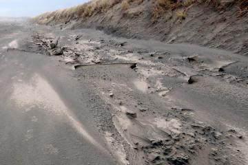 Evidence of higher tides on sand dune?