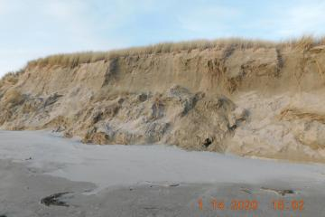 Eroding sand bluff