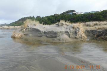 Foredune erosion and shearing