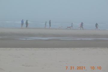 Group enjoying beach