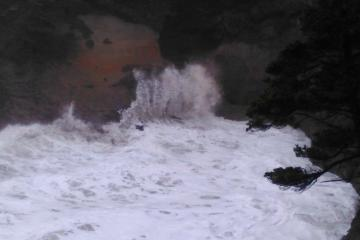 High Waves in Whale Cove 2