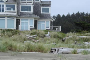 Logs near the top of sand dune protecting houses at South Shore housing development
