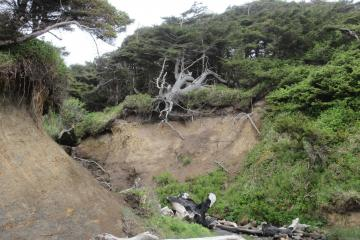 Erosion continuing at Henderson Creek