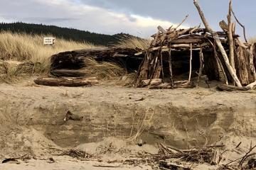 Driftwood fort built atop the dunes' sharp 3' vertical edge