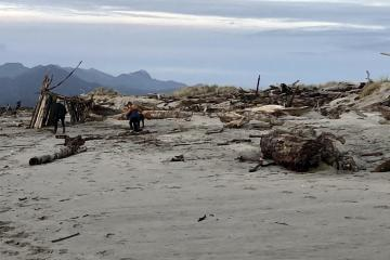 Kids play at one of many driftwood forts on Nadona Beach