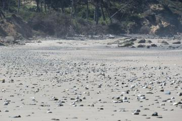 Sand filling in rocky beach.