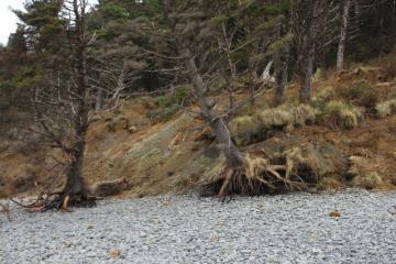LANDSLIDE COVE BEACH